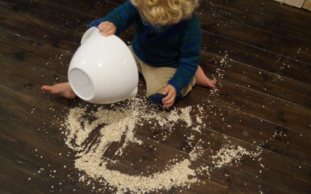 Von Übermüdung, Geduld, Haferflocken, Montessori und Vogelfutter…